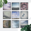 Nature Wall Art Gallery, Set of 9 x 40x40cm Prints by Sonny Mo Arts