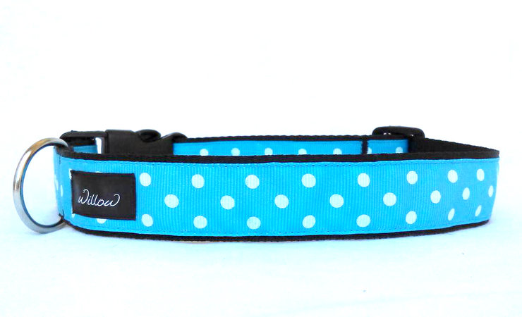 XL Turquoise Polka Dot Dog Collar XLarge by Willow Pet Accessories