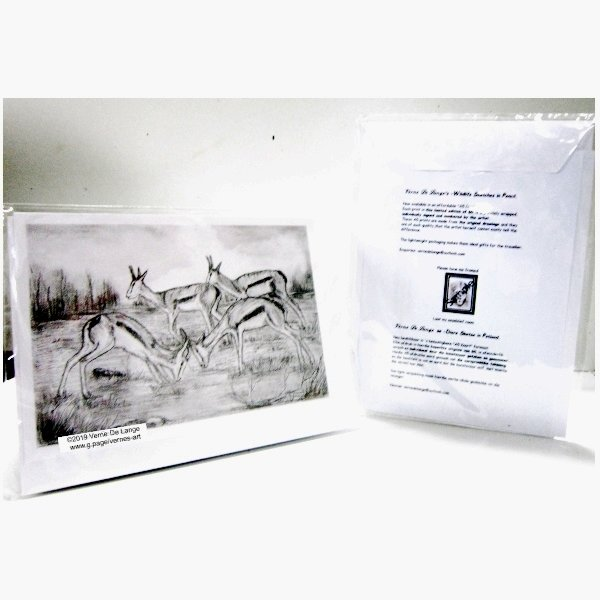 Vernes wildlife drawing - Springbucks A5 limited edition card print by Verne's art and Crafts