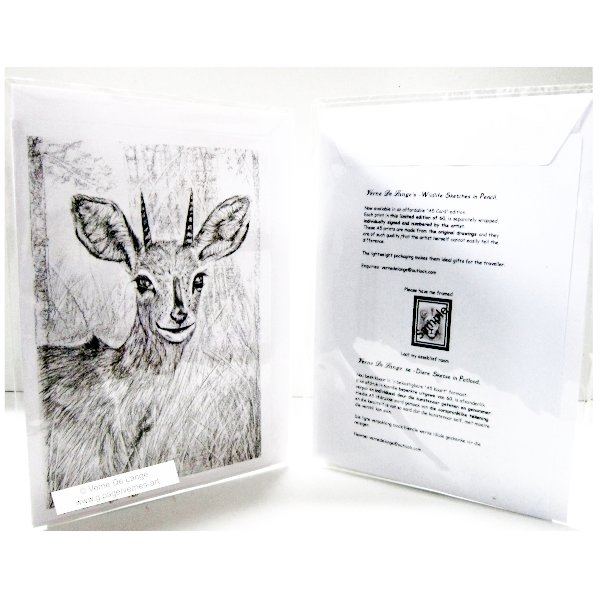 Vernes wildlife drawing - Steenbuck A5 limited edition card print by Verne's art and Crafts